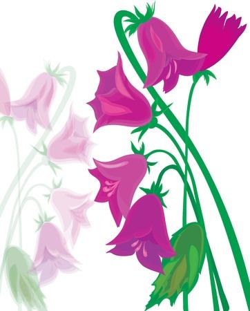 Bouquet of lilac hand bells. Vector