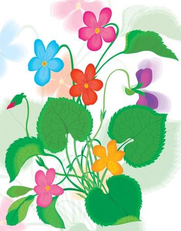 Beautiful bouquet of color colors Illustration