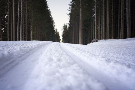 chilled out: Cross-Country Ski Run