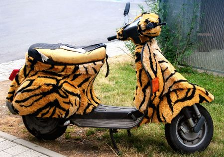 cranky: Scooter w Tiger Fur Stock Photo
