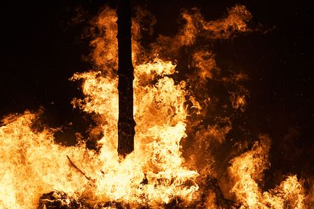 forest fire: Incendios forestales causan estragos