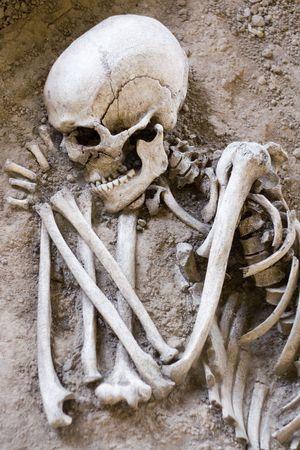 esqueleto: Esqueleto El Dormir