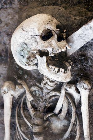 esqueleto: Laughing Esqueleto  Foto de archivo