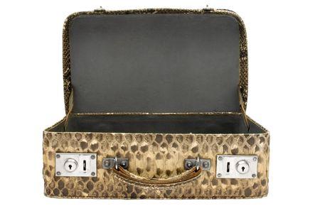 globetrotter: Snakeskin Bag w Path