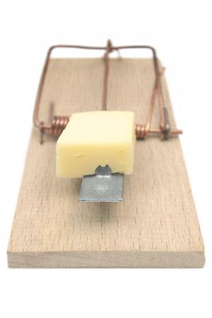 Mousetrap (Front View) photo
