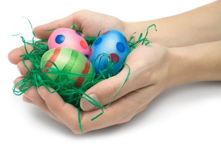 Female hands holding an easter nest. Isolated on a white background. photo