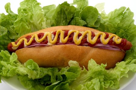 Large footlong hotdog with onions, ketchup, cheese and mustard on a bed of lettuce photo