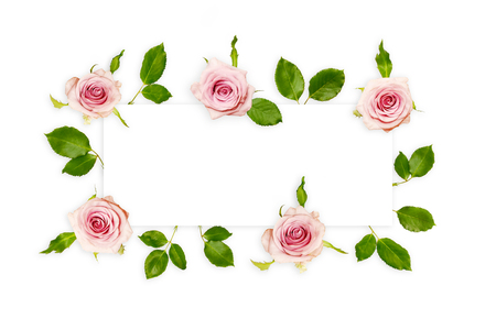 Frame with fresh pink roses and green leaves isolated on white, top view. Beautiful rose flowers background with empty space for text.