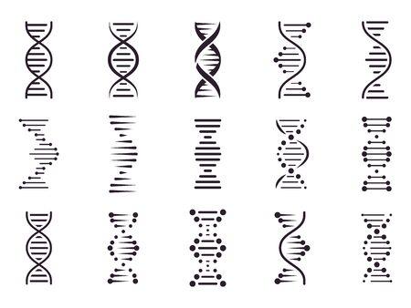 Icono de ADN en espiral. Estructura espiral de la hélice de la molécula de ADN, concepto del cromosoma de la ciencia médica, símbolos genéticos de la biología aislados conjunto de iconos vectoriales. Bioquímica. Cadena de ácido desoxirribonucleico. Codigo genetico