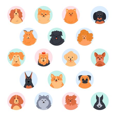 Pet cute faces. Cute dog head. Poodle, funny yorkshire terrier, pomeranian spitz and labrador retriever. Purebred dogs muzzle vector illustration set. Social network circular avatars. Flat icon pack