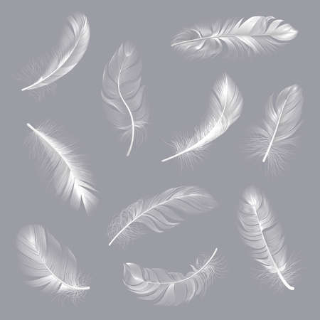 Realistic feathers. Fluffy white twirled feathers, bird wing falling weightless feather, flying lung quill isolated vector illustration set. White feather, fluffy soft realistic collection