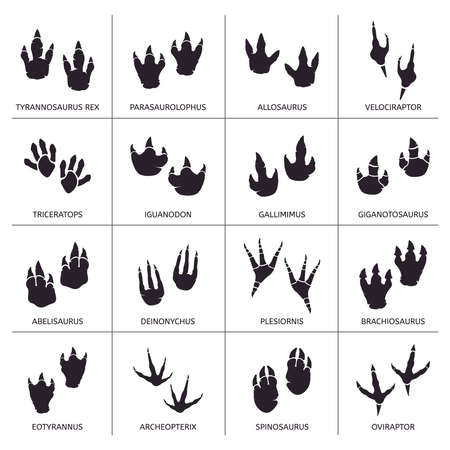Dinosaur footprint. Reptile foot anatomy, ancient predator animals footprint tracks, paleontology dino traces vector illustration icons set. Reptile foot monster, print dinosaur shape paw