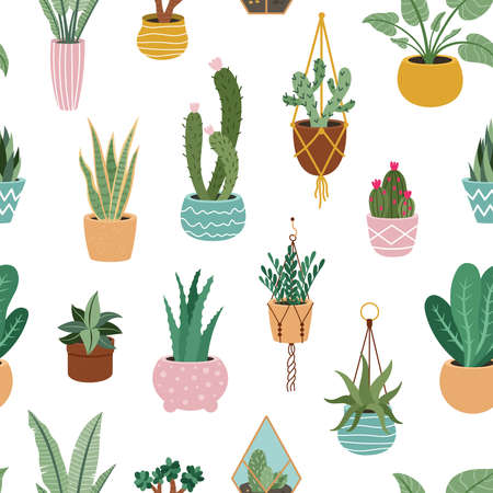 Home plants pattern. Seamless flower potted plant, decorative botanical indoor houseplant, home potted plants vector background illustration. Blooming cactus, succulent hanging on rope