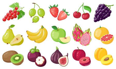Cartoon fruits. Tropical fruit, banana, fig, apple and dragon fruit, citrus and berries, vegetarian exotic fruits vector illustration icons set. Organic and vegan food with vitamins