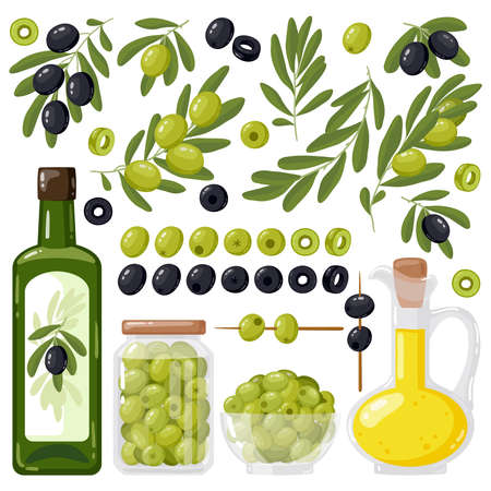 Cartoon olive. Black and green olives, olive tree branches and extra virgin olive oil, healthy organic olive products vector illustration set. Agricultural ripe plant, bowl and jar with food