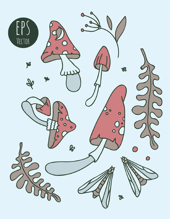 fly agaric: Vector illustration with amanita, leaves, berries and insects. Illustration