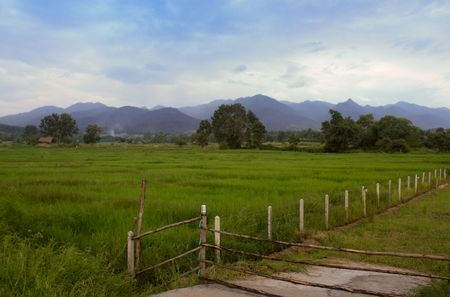 The Nature of PAI, Northern Thailand. Stock Photo