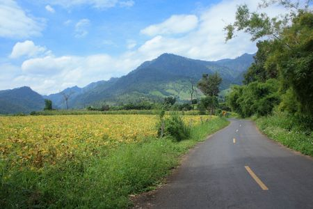 By The way, Northern Thailand. Stock Photo