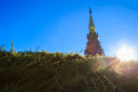 entrap: Cobweb on pagoda background and light from the sun on blue sky.