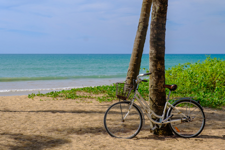 The bicycle is parked at the coconut trees along the beautiful beach.