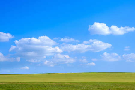 Landscape of grass field on a day beautiful blue sky. 版權商用圖片