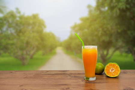 Orange juice and oranges put on the wood on garden background. 版權商用圖片