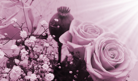betroth: monochrome bunch of roses - retro style