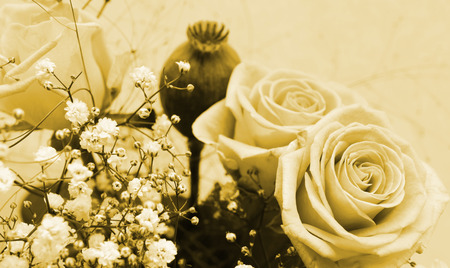 betroth: festive bunch of roses - retro background Stock Photo