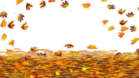 pano: colorful autumn leaves on white frame background