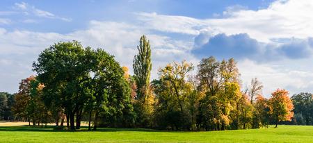 autumnal day in parkland