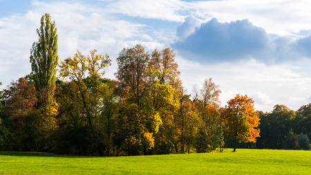 indian summer: Indian Summer in the park
