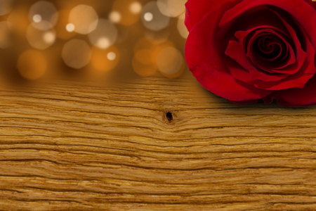 red rose: red rose flower on wood Stock Photo