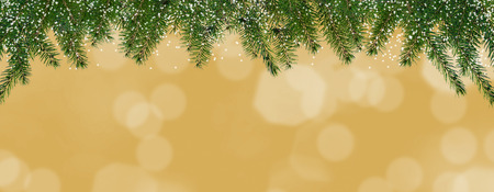 conifer: Christmas background with hanging conifer twigs - pano, 3d illustration Stock Photo