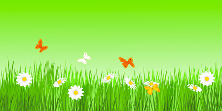 flowers and butterflies on meadow Stock Photo