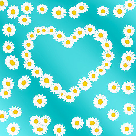 estival: heart of camomile blossoms on turquoise background