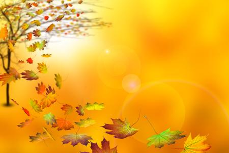 herfst boom op abstracte herfst achtergrond Stockfoto