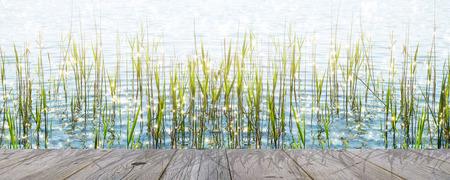 wooden deck waterside in sunhine