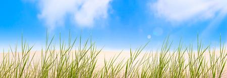sand dune grass blue sky Banco de Imagens