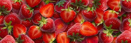 fresh picked strawberries panorama Banco de Imagens
