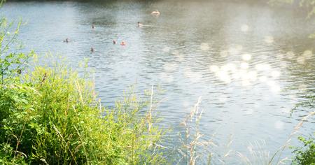 bathing people in a wild lake Banco de Imagens