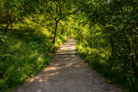 Dovedale-A beautiful landscape on a sunny day in a natural nature reserve in England Foto de archivo