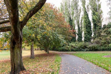 维多利亚公园 - 英国公园景观。一个放松的完美场所