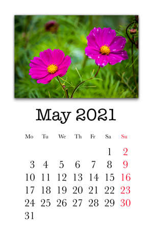 Calendar card for the month of May 2021
