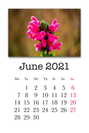 Calendar card for the month of June 2021