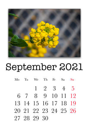 Calendar card for the month of September 2021