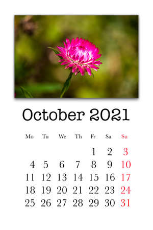 Calendar card for the month of October 2021
