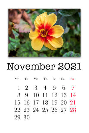 Calendar card for the month of November 2021 Stock fotó