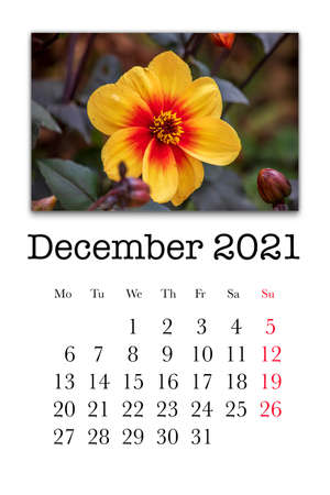 Calendar card for the month of December 2021