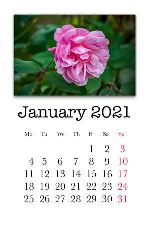 Calendar card for the month of January 2021 Stock fotó