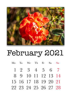 Calendar card for the month of February 2021 Stock fotó